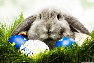 """Konkurs """"Najpiękniejsza Kartka Wielkanocna"""""""